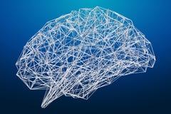 Digital x-ray human brain 3D rendering Stock Photos