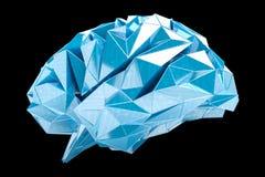 Digital x-ray human brain 3D rendering Stock Image