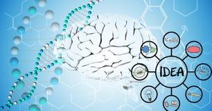 Digital sammansatt bild av hjärnan 3d, DNA:t och idédiagram Arkivfoto