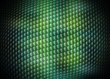 Digital snakeskin background Stock Photo