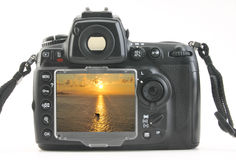 Digital still camera Stock Photography