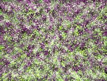 Digital storm of violet and green elements royalty free illustration