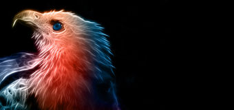 Digital teckning av Bald Eagle fotografering för bildbyråer