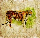 Digital tiger Royalty Free Stock Photography