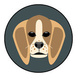 Digital vector beagle dog face Stock Photo