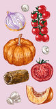 Digital vector detailed color vegetable hand drawn Royalty Free Stock Photography