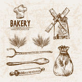 Digital vector detailed line art bakery. Bread and dried wheat hand drawn retro illustration collection set. Thin artistic pencil outline. Vintage ink flat royalty free illustration