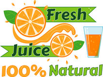 Digital vector fresh orange juice. Glass and green leafes. Flat style Royalty Free Stock Photography