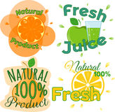 Digital vector fresh orange juice. Glass and green leafes. Pear, apple and limon. Flat style Royalty Free Stock Photo