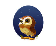 Digital vector funny cartoon owl. Digital vector funny comic cartoon owl bird with big eyes in the night sitting on a tree, hand drawn illustration, abstract vector illustration