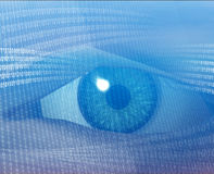 Digital vision. Eye viewing electronic information Stock Image