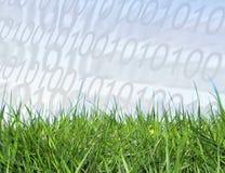 Digital-Wachstum lizenzfreie abbildung