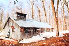 Watercolor of a sugar shack Royalty Free Stock Photos