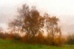 Digital watercolour of a silver Birch with golden autumnal leave stock illustration