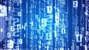 Digital white numbers as code rain