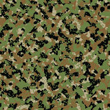 Digital woodland seamless camo. Pattern Royalty Free Stock Photography