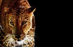 Digital-Zeichnung eines Tigers Stockbilder