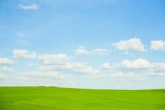 Digital-Zusammensetzung der grünen Wiese und des blauen Himmels Lizenzfreie Stockbilder
