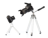 digitala kameror Arkivfoton