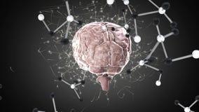 Digitale animatie van hersenen en molecules royalty-vrije illustratie