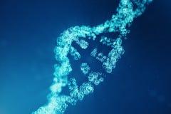 Digitale DNA-molecule, structuur Het menselijke genoom van de concepten binaire code DNA-molecule met gewijzigde genen 3D Illustr stock fotografie