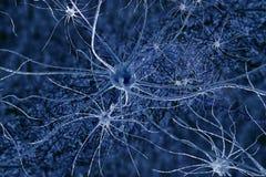 Digitale illustratieneuronen royalty-vrije stock afbeelding