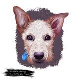 Digitale Kunstillustration der australischen Stummelschwanz-Vieh-Hundehündchenzucht lokalisiert auf Weiß Populäres Welpenporträt  lizenzfreie abbildung