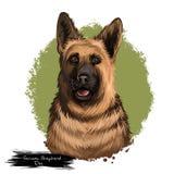 Digitale Kunstillustration Schäferhund-Dog-Hunderasse lokalisiert auf Weiß Populäres Welpenporträt mit Text Nettes Haustier vektor abbildung