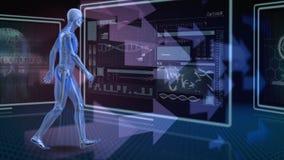 Digitale menselijke anatomie stock illustratie