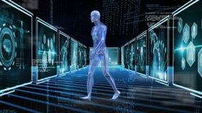 Digitale menselijke anatomie royalty-vrije illustratie