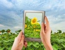 Digitale tablet Stock Foto