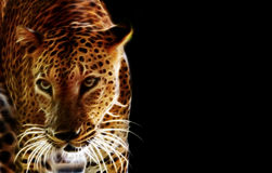 Digitale tekening van een tijger stock afbeeldingen