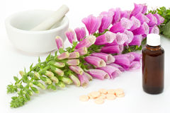 Digitalis with cardiac agents Royalty Free Stock Images