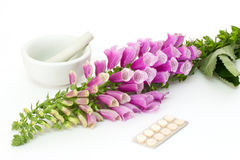 Digitalis with cardiac pills Stock Image