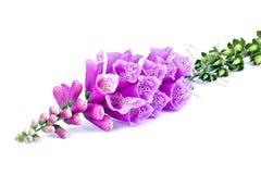 Digitalis of a garden on white. Flowering plant Digitalis isolated on white background royalty free stock image