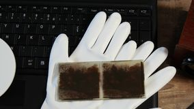 Digitalisering av gammalt fotografi på exponeringsglasplattan arkivfilmer