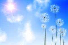Digitally generated dandelions against blue sky Royalty Free Stock Images