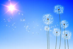 Digitally generated dandelions against blue sky Stock Photo