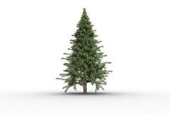 Digitally generated green fir tree Royalty Free Stock Photo