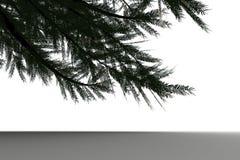 Digitally generated green fir tree Royalty Free Stock Image