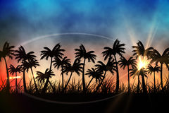 Digitally generated palm tree background Stock Photography