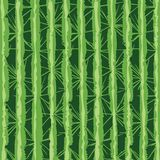 Digitally remastered cactus texture, based on my own photo of a cactus tree. Spiky green cactus surface, based on authentic, organic pattern found in nature vector illustration