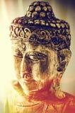 Digitalt kulört för Boedha stående royaltyfria bilder