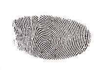Digitised Fingerprint. A inked and digitised fingerprint captured using forensic tools stock illustration