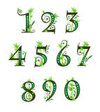 Digits with floral elements Stock Image