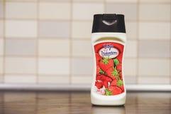 Dijo草莓调味汁 免版税库存图片