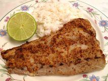 Dijon Mustard Sauce Bluefish Fillet Royalty Free Stock Images
