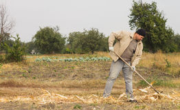 DIKANKA, UCRAINA - 30 SETTEMBRE 2015: Agricoltore del paese che lavora dentro Fotografia Stock Libera da Diritti
