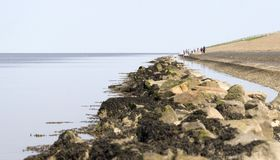 in the Netherlands - Waddensea stock images