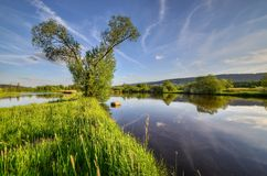 On the dike between ponds Stock Photos
